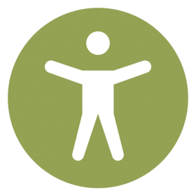 icons8-web_accessibility